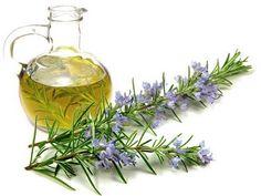 Essential Oils for Hair Growth Recipe Help Hair Grow, Essential Oils For Hair, Hair Growth Oil, Carrier Oils, Belleza Natural, Hair Oil, Jojoba Oil, Natural Oils, Amor Youtube