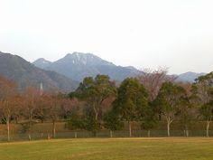 菰野町大羽根園地区 「釈迦ヶ岳」  平成24年4月5日撮影