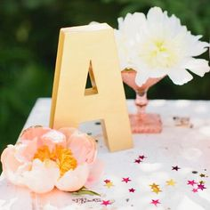 Loving the idea of the babies initial as decoration! This gold painted letter is the cutest touch ✨