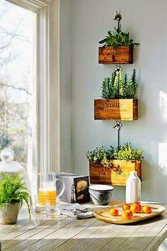 Hierbas en la cocina / Herbs at the kitchen | Decoración