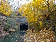 Susquehanna Appalachian Trail Club Homepage