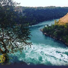 #beautifulday #sundayfunday #niagarafalls #lovelyday #naturelover #whirlpool #greatview #discoverontario #ontario #photooftheday Ontario, Canada, In This Moment, River, Photo And Video, Park, Beach, Nature, Outdoor