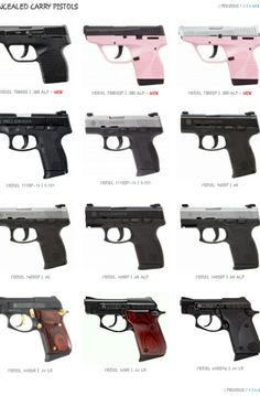 Taurus concealed carry series