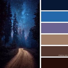 Shades Of A Winding Road At Nighttime (Photo Credit • 500px.com/hendrikmandla) #chasingcolor #colorthemes #colorful #color #palette #colorpalette #shades #tones #hues #colorinspiration #inspiration #creative #art #photography #design #theme #windingroad #road #nature #nighttime #nightsky #sky #stars #forest #galaxy #space