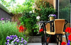 In small space garden design, you can pay attention to detail and keep on top of maintenance, while still having time to sit and enjoy your garden.