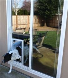 The Security Boss In-Glass MaxSeal offers sizes to fit any cat or dog breed size. Contact your local glass professional to get started today! Sliding Door Dog Door, Sliding Glass Door, Glass Doors, In Glass Pet Door, Dog Door Insert, Dog Kennel Inside, Diy Doggie Door, Porch Doors, Dog Fence