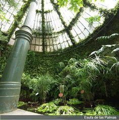 Invernadero.Real Jardín Botanico de Madrid.  #jardinbotanico #Madrid