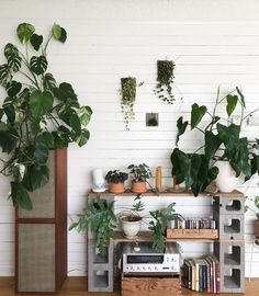 Our Buyer And Gm Arianatanabe Moved Homes Recently. It's Amazing How Quickly She's Created A Dreamy Plant-Filed Wonder Space. Cinder Block Shelves, Cinder Blocks, Cinder Block Furniture, Concrete Furniture, House Plants Decor, Creation Deco, Home Decor Trends, Interior Design Living Room, Room Inspiration