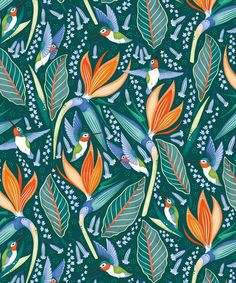 Orange Flowers, Colorful Flowers, Vibrant Colors, Animal Wallpaper, Of Wallpaper, Wallpaper Ideas, Hummingbird Wallpaper, Boutique Wallpaper, Moving To New Zealand