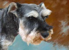 Schnazuer/Schnauzer Portrait I Custom Schnauzer Pet Portrait  I  Schnauzer Portrait From Your Photo I Dog Portraits by NC