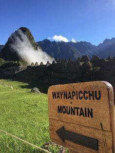Wayanapichu