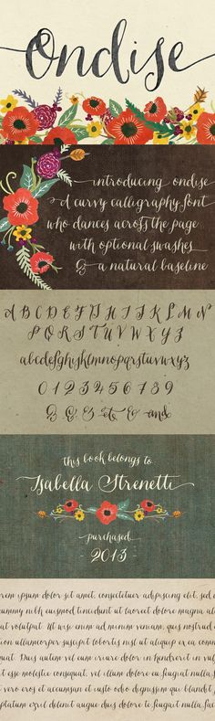 Ondise Font by Magpie Paper Works   22 Professional & Artistic Fonts Apr 2015