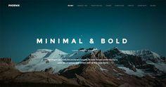 Una delle cose più interessanti è stata proprio la nascita di siti one page che appartengono di fatto alla categoria del pageless web design.