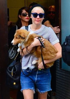 Pin for Later: This Week's Can't-Miss Celebrity Photos  Miley Cyrus took good care of her dog Emu in New York.