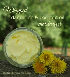 whipped dandelion and coconut oil moisturizer  1/2 cup of coconut oil 1/4 cup of dried dandelion flowers
