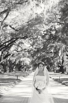 Boone Hall Bridal Portraits Sally Freshour Photography www.sallyfreshour.com