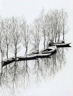 Toni Schneiders - Flood at Lake Skutari, Yugoslavia, 1971