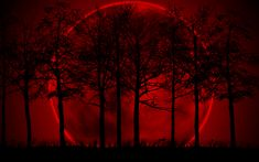 Blood Red Moon | BloodRed Moon