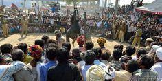 Pushkar-CL-145 - Pushkar (camel fair) Horse competition