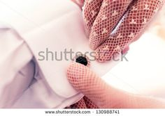 Wedding Fashion Stock Photos, Images, & Pictures | Shutterstock