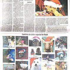 Fiquei famosa! Olha minha fotinha no jornal. Link para o jornal eletrônico http://diariodovale.com.br/colunas/dar-ou-nao-alimentos-da-ceia-de-natal-para-os-nossos-caes/#prettyPhoto  #pugpulguinha #dv #pug #pugs #pugrio #pugriodejaneiro #pugrj #natal #diariodovale #puglove #puglife #pugbrasil #dogrj #caorioca #FocinhoCarioca #FocinhoCarioca #pugsbrasil
