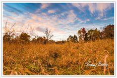 Sunsets-Landscape-Photography Sunset Landscape Photography Wedding Photography Rodney Bailey Washington DC Virginia Maryland