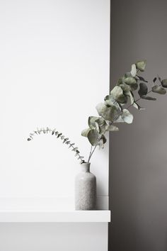 Minimalist styling of eucalyptus in clay vase on IKEA Mosslanda shelf.