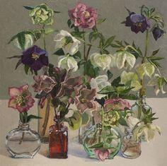 Helleborus III. Lucy Culliton - Bibbenluke Flowers exhibition