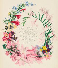 Botanical art (Via TIGERS TO LILIES)