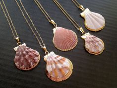 Sea Shell Necklace Gold Edged Shell Neсklace by SinusFinnicus