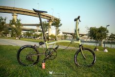 Brompton by Shinnaji Brompton, Folding Bicycle, Fixed Gear Bike, Cycling Art, Cool Bicycles, Bicycle Accessories, England, Korea, Bike Ideas