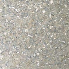Mediterranean seashell honed💚🐚💛 forever a favorite. #luxurystone #kitchendesign #bathroomdesign #travertine #marble #naturalstone #honedmarble #palmbeachdesign