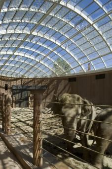 Elephant House - Copenhagen Zoo - with insulating glass OKATHERM from OKALUX - Richard Davies