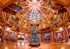 Disney Resort Hotels - tombricker