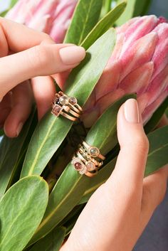 Rustic Diamond Engagement Rings and Protea by Corey Egan