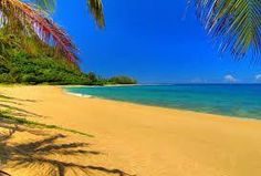 Gold Sand Beach