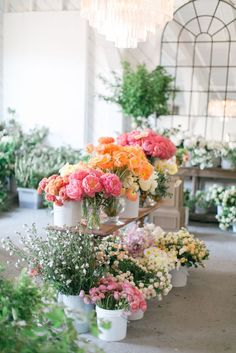 Learn how to make a stunning Spring centerpiece using peonies, ranunculus, garden roses and cumquats that will take your party table to the next level in floral decor. Flower Shop Decor, Flower Shop Design, Flower Shops, Floral Design, Exotic Flowers, Beautiful Flowers, Purple Flowers, Beautiful Life, Fresh Flowers
