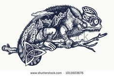 Chameleon double exposure tattoo art. Tourism symbol, tropical adventure, great outdoor, mountains. Chameleon lizard on a branch silhouette t-shirt design