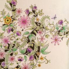 Jardim secreto/ Flores ao vento /Johanna Basford