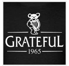 01ad6a77c8527 Men s Grateful Dead Bear Guinness Harp Lot Shirt
