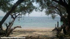 Koh Tao Freedom Beach
