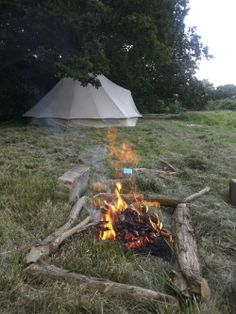 Farrs Meadow~ Secluded Eco camping in Wimborne, Dorset.