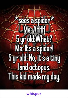 *sees a spider* Me: AHHH 5 yr old:What? Me: Its a spider! 5 yr old: No, it's a tiny land octopus. This kid made my day.