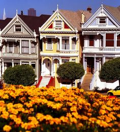 Alamo Square Park / Painted Ladies / San Francisco / CA San Francisco California, California Usa, Northern California, Oh The Places You'll Go, Places To Visit, San Francisco Sites, Victorian Style Homes, Victorian Houses, Alamo Square