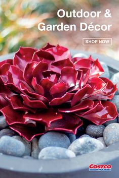 "The Ruby Rose Succulent by Desert Steel is the perfect complement to any landscape. Beautifully crafted with galvanized steel and a powder-coated finish, this piece of art measures 3"" by 9"" and resists rust in any climate. Shop now at Costco.com."