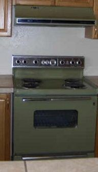 Avocado green appliances. Yikes..... We believe our mom used to have this model.