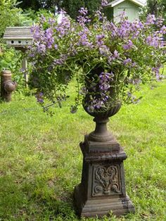 metal garden urn and purple flowers... love it