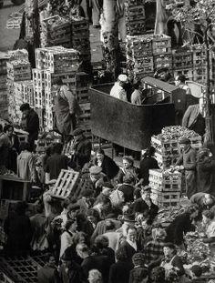 """France. """"Pissoirs"""" Les Halles, Paris 1953 // Robert Doisneau"""