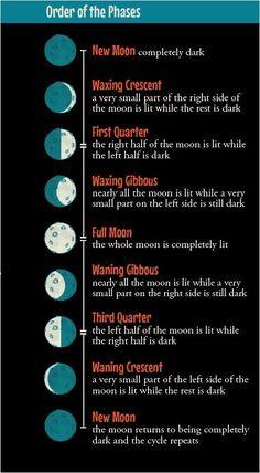 Moon Phases Calendar Print   Pinteres