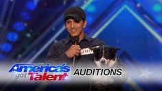 Pato and Ginger The Dog: Audience Goes Nuts for Amazing Dog Tricks - Ame...